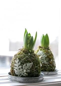 bloembol-verpakt-in-mos-voor-kerst-1416923326-van-gerdienv